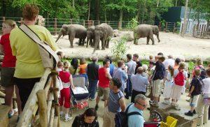 dierentuin amersfoort